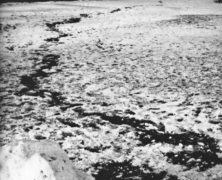 A Snowball Track, 1964