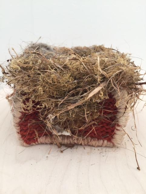Art and Nest.jpg