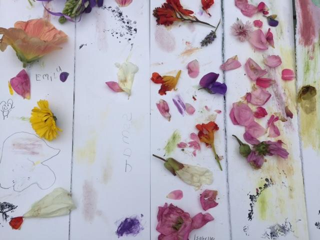 flower rubbings