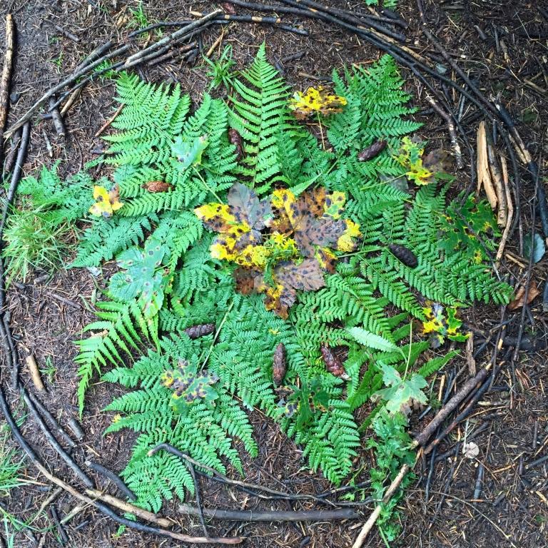 forest mandala.jpg