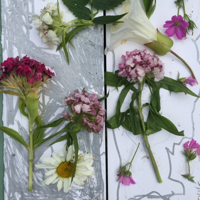Flowers on Card